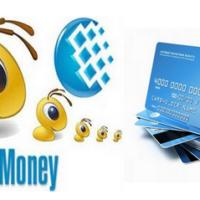 Вебмани-бизнес, или как зарабатывать большие деньги с помощью платежной системы Webmoney